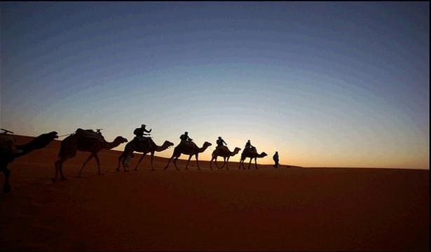 camel-trekking